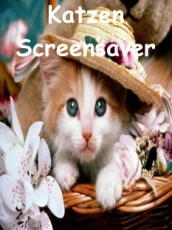 Katzen Screensaver
